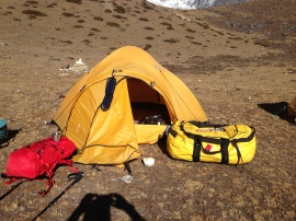Pepe's tent